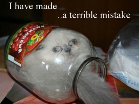 terrible_mistake_691a13_4191318